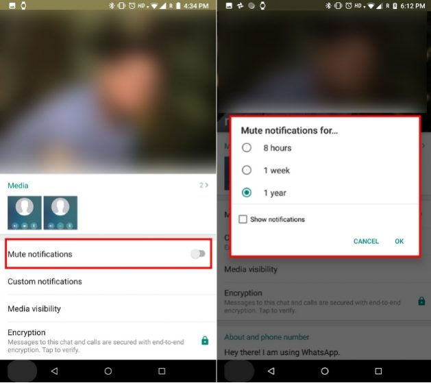 How to Customize Whatsapp Notification on Android and iOS - Gtlt