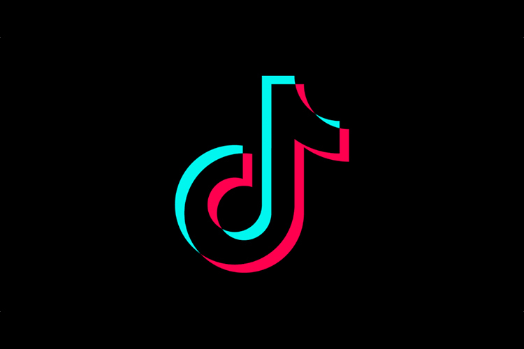 TikTok Ban Lifted by Madras High Court