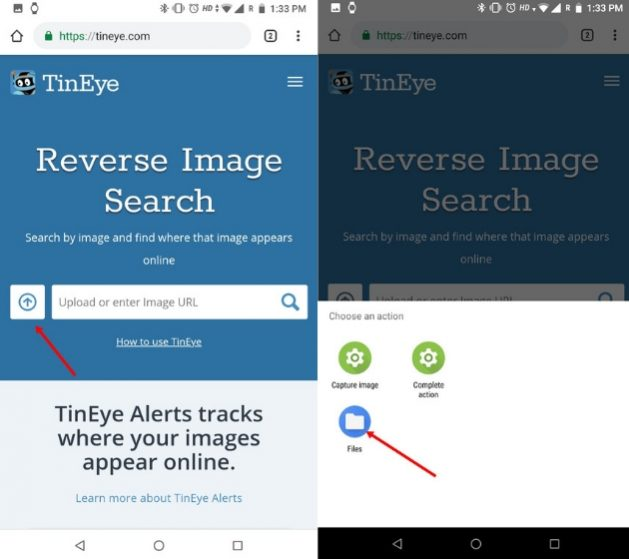 Reverse Image Search on Phone with TinEye (iOS and Android) 1