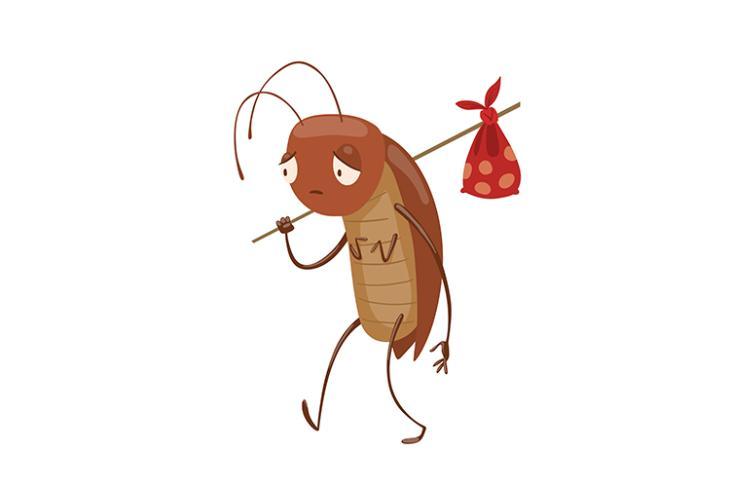 cockroach challenge