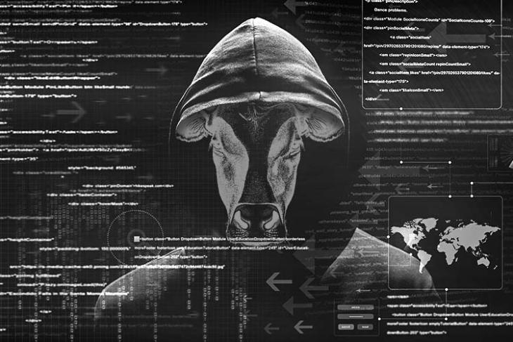 delhi bjp hacked