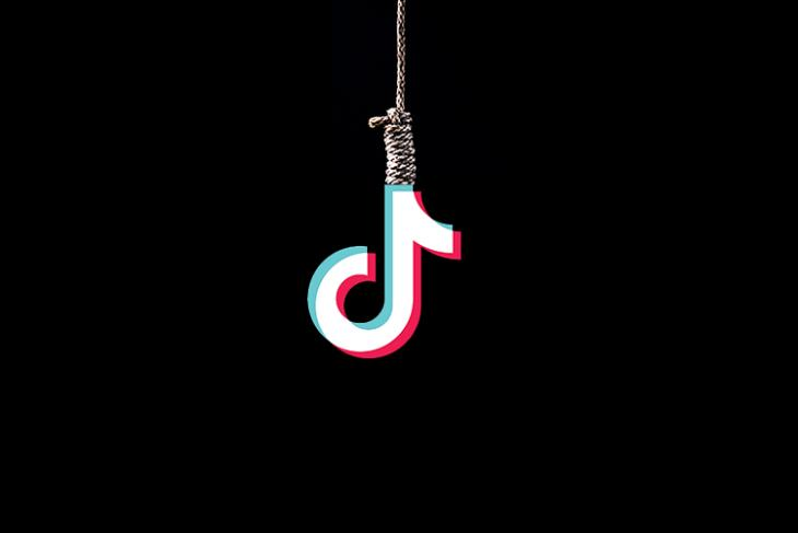 Mother of two from Tamil Nadu suicide on TikTok