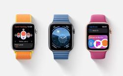 watch os 6 delete built in apps apple watch