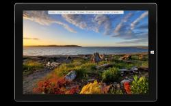 Screen Saver Gallery - Get the Best Windows 10 Screensavers and Wallpapers