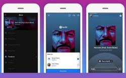 Spotify Facebook Stories website