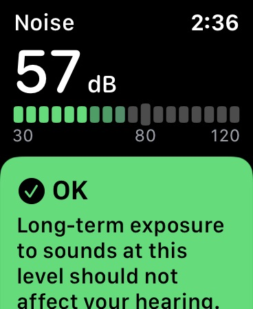 Check noise level on Apple Watch