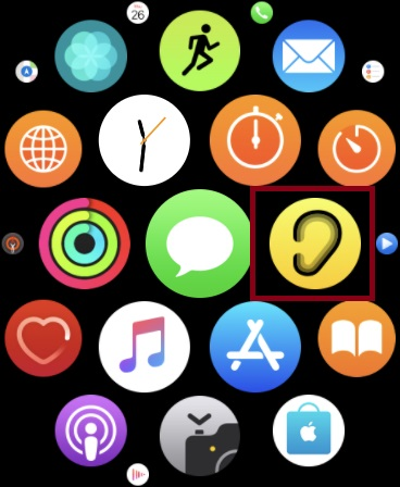 Launch Noise app on your Apple Watch