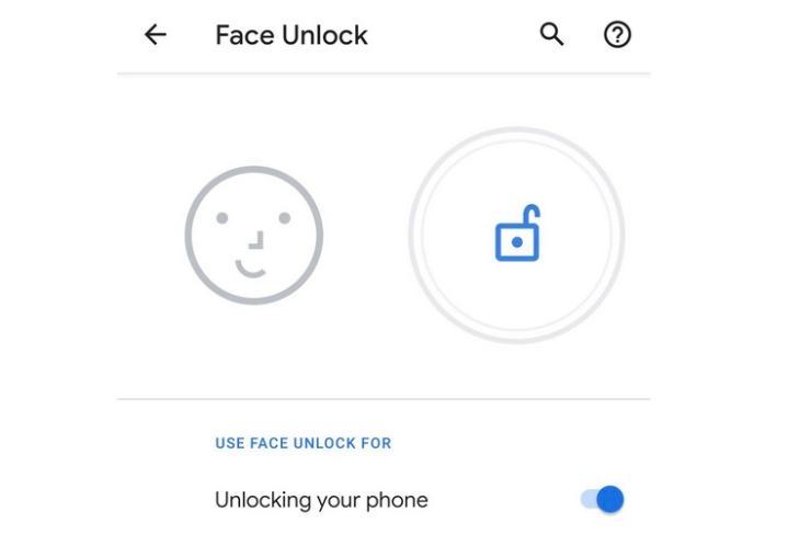 Pixel 4 Facial Recognition website
