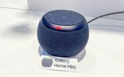 Samsung Galaxy Home Mini speaker shown off at dev con