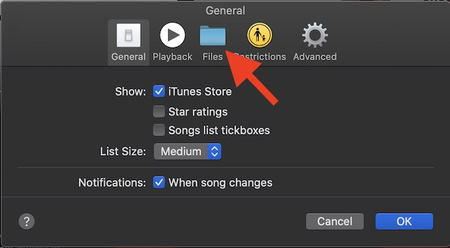 Choose Files tab in the Music preferences
