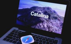 Safari Running Slow After macOS Catalina Update Here is a Fix