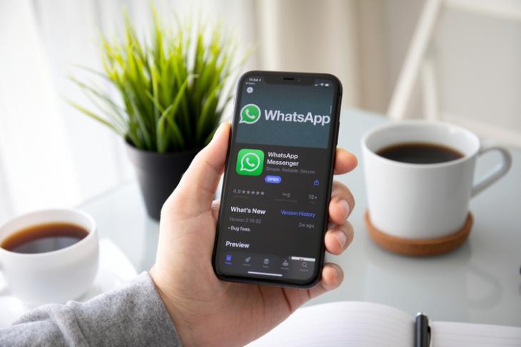 WhatsApp iPhone 11 dark shutterstock website