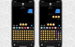 Predictive Emoji Keyboard Not Working in iOS 13? Here is the Fix