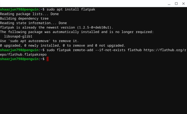 Install Flatpak in Linux on Chromebook