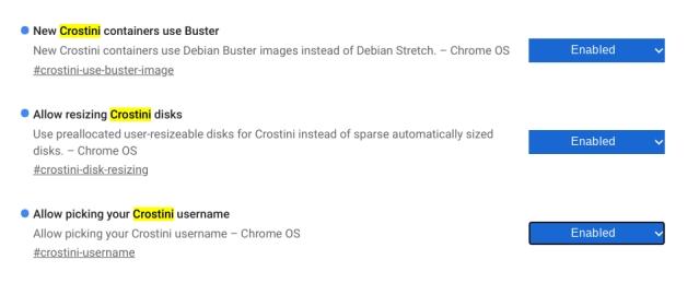 Install Debian Buster on Chromebook 4