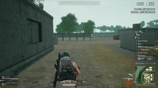 PUBG Lite on Windows PC