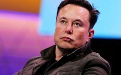 Elon musk donates feat.