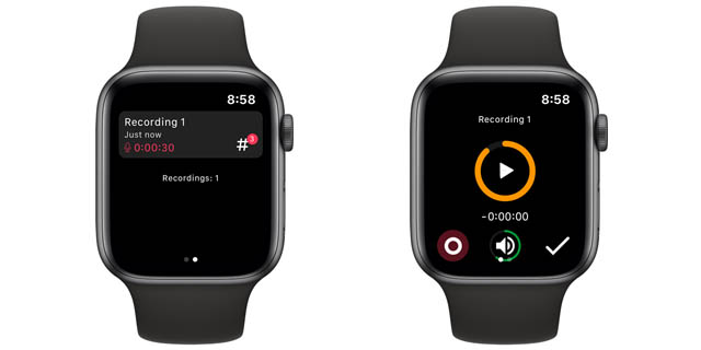 noted voice notes app for apple watch