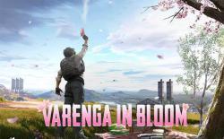 varenga in bloom featured