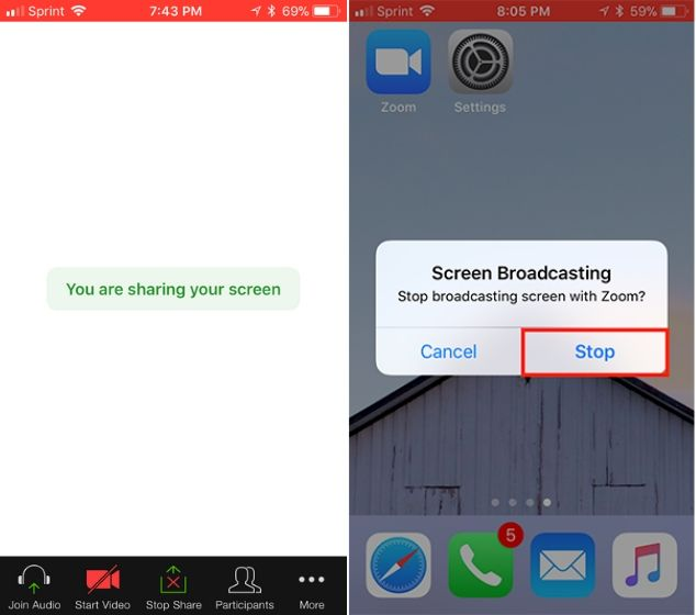 How to Share Your Screen on Zoom (Desktop and Mobile)