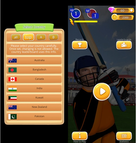 Cricket Game Smashing Cricket