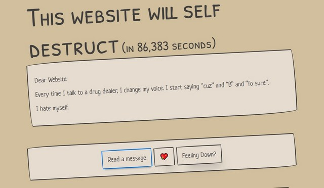 Website self destruct 1