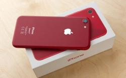 iPhone SE 2 launch expected today