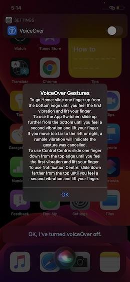 Voice over in iOS 14