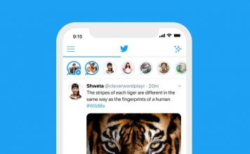 twitter fleets launches in India