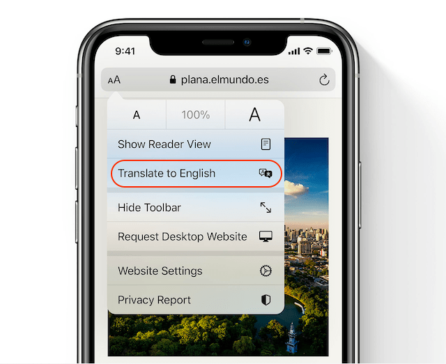 translating web page in Safari 2