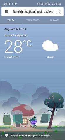 Google hava durumu kurbağa maskesi