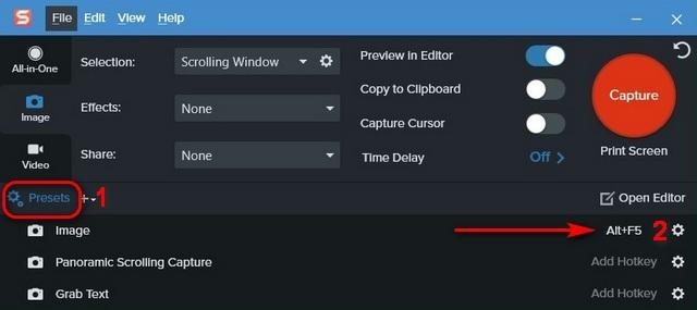 Сделайте снимок экрана с прокруткой в Windows 10 Snagit
