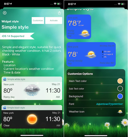 Weather widget and radar