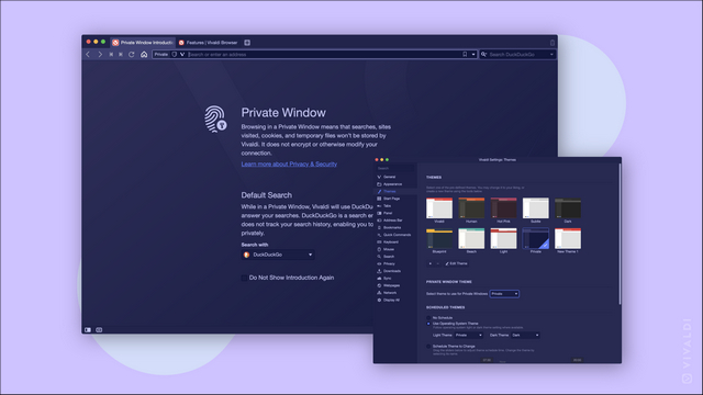 vivaldi private theme