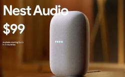 nest audio launched