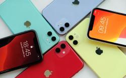 Apple iPhone 11 stolen