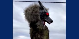 Japan's monster wolf robots feat.