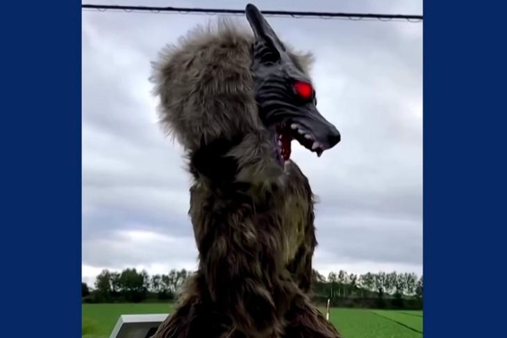 Japan's monster wolf robots feat.