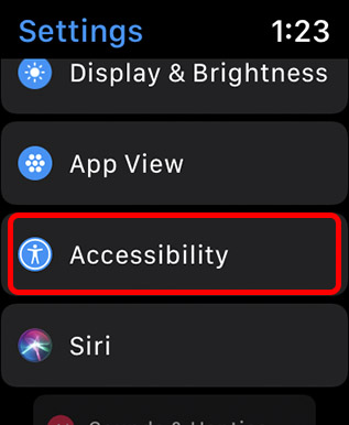 accessibility settings apple watch