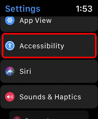 accessibility settings watchos