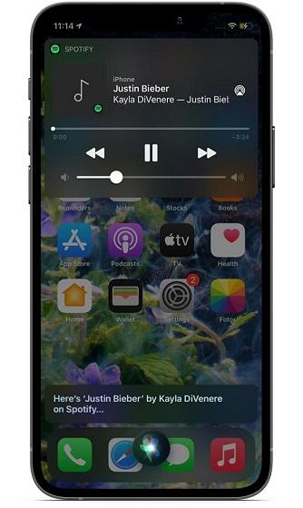 Change default music on iOS and iPadOS