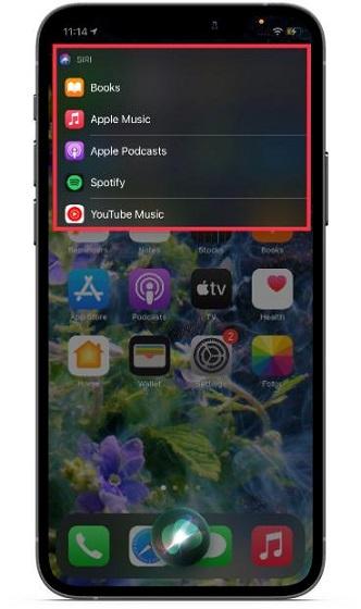 Choose the music app