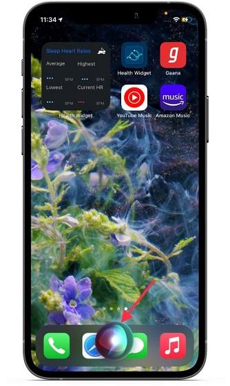 Invoke Siri on Iphone