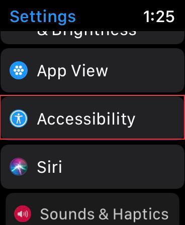 Tippen Sie auf der Apple Watch auf Eingabehilfen