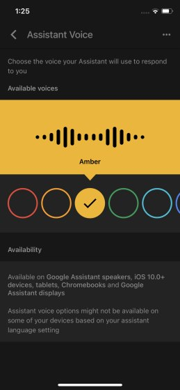 change google assistant voice and language - iPhone 2