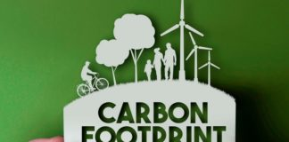 Best Carbon Footprint Calculators to Calculate Your Carbon Footprint