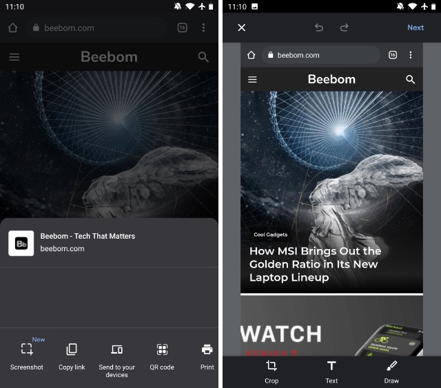 chrome flag screenshot android