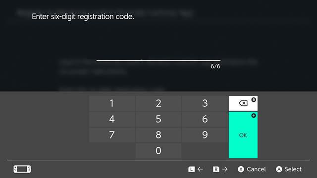 enter registration code nintendo switch
