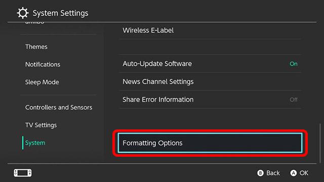 formatting options nintendo switch