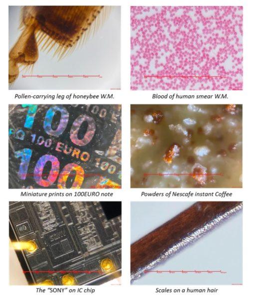 imicro Q2 portable microscope images